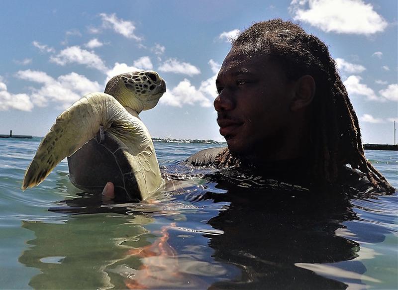 Turtle Project Bermuda Aug 2019 (1)