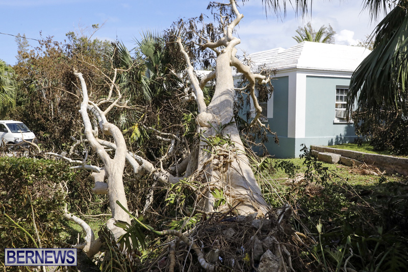 Bermuda-After-Hurricane-Humberto-Sept-20-2019-38