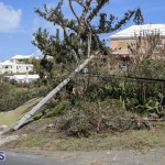 Bermuda After Hurricane Humberto Sept 20 2019 (47)