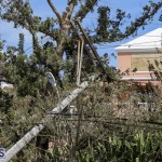 Bermuda After Hurricane Humberto Sept 20 2019 (48)