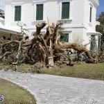 Bermuda After Hurricane Humberto Sept 20 2019 (65)