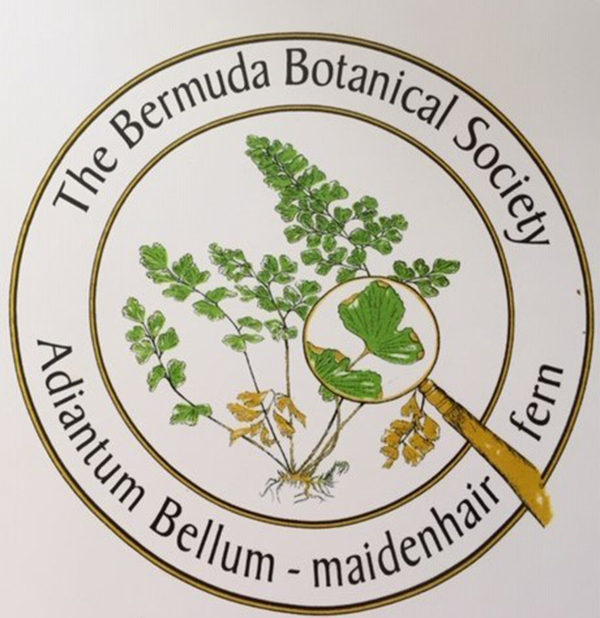 Bermuda Botanical Society Plant Sale Sept 2019