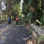 Damages After Hurricane Humberto Bermuda Sept 19 2019 (2)