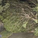 Damages After Hurricane Humberto Bermuda September 19 2019 (1)