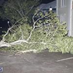 Damages After Hurricane Humberto Bermuda September 19 2019 (107)