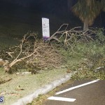 Damages After Hurricane Humberto Bermuda September 19 2019 (126)