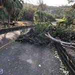 Damages After Hurricane Humberto Bermuda September 19 2019 (134)