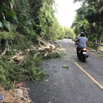 Damages After Hurricane Humberto Bermuda September 19 2019 (139)