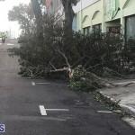 Damages After Hurricane Humberto Bermuda September 19 2019 (146)