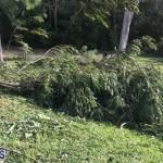Damages After Hurricane Humberto Bermuda September 19 2019 (147)