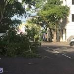 Damages After Hurricane Humberto Bermuda September 19 2019 (148)