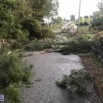 Damages After Hurricane Humberto Bermuda September 19 2019 (149)