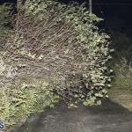 Damages After Hurricane Humberto Bermuda September 19 2019 (15)
