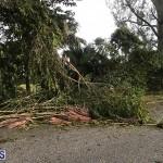 Damages After Hurricane Humberto Bermuda September 19 2019 (150)