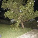 Damages After Hurricane Humberto Bermuda September 19 2019 (151)