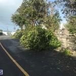 Damages After Hurricane Humberto Bermuda September 19 2019 (160)