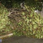 Damages After Hurricane Humberto Bermuda September 19 2019 (22)