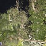 Damages After Hurricane Humberto Bermuda September 19 2019 (26)