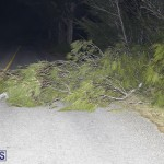 Damages After Hurricane Humberto Bermuda September 19 2019 (32)