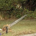 Damages After Hurricane Humberto Bermuda September 19 2019 (40)