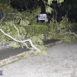 Damages After Hurricane Humberto Bermuda September 19 2019 (63)
