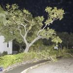 Damages After Hurricane Humberto Bermuda September 19 2019 (64)