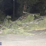 Damages After Hurricane Humberto Bermuda September 19 2019 (65)
