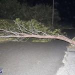 Damages After Hurricane Humberto Bermuda September 19 2019 (73)