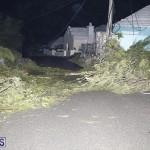 Damages After Hurricane Humberto Bermuda September 19 2019 (74)