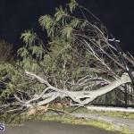 Damages After Hurricane Humberto Bermuda September 19 2019 (86)
