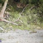 Damages After Hurricane Humberto Bermuda September 19 2019 (99)