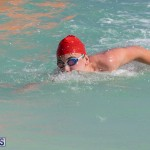 Open Water Bermuda National Swimming Championships, September 15 2019-0047