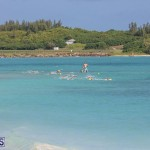 Open Water Bermuda National Swimming Championships, September 15 2019-0062