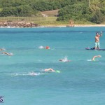 Open Water Bermuda National Swimming Championships, September 15 2019-0239