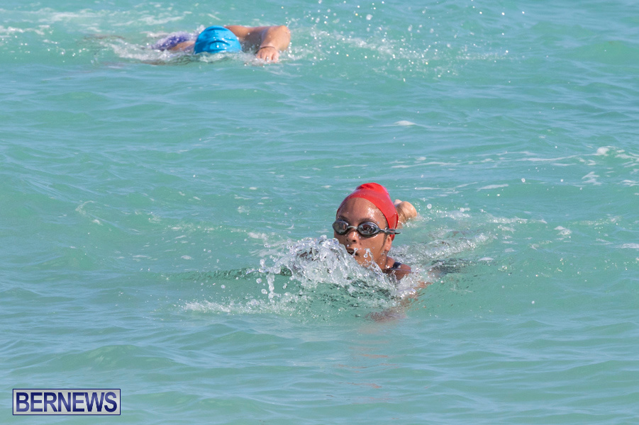 Open-Water-Bermuda-National-Swimming-Championships-September-15-2019-0251