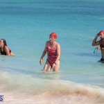Open Water Bermuda National Swimming Championships, September 15 2019-0309