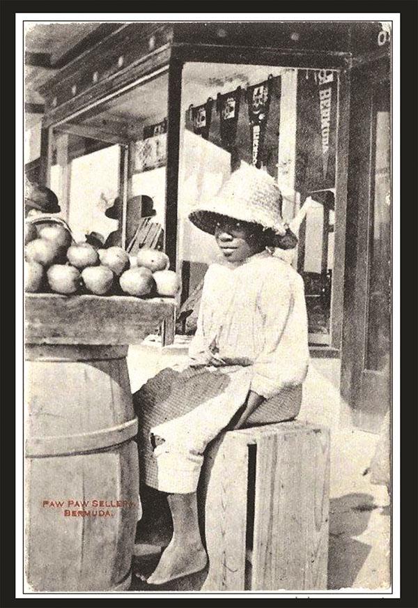 Pawpaw Bermuda September 6 2019 'Pawpaw Seller' postcard  (1)