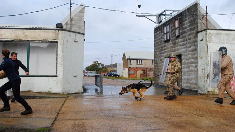 Royal Bermuda Regiment Training Sept 2019 (4)