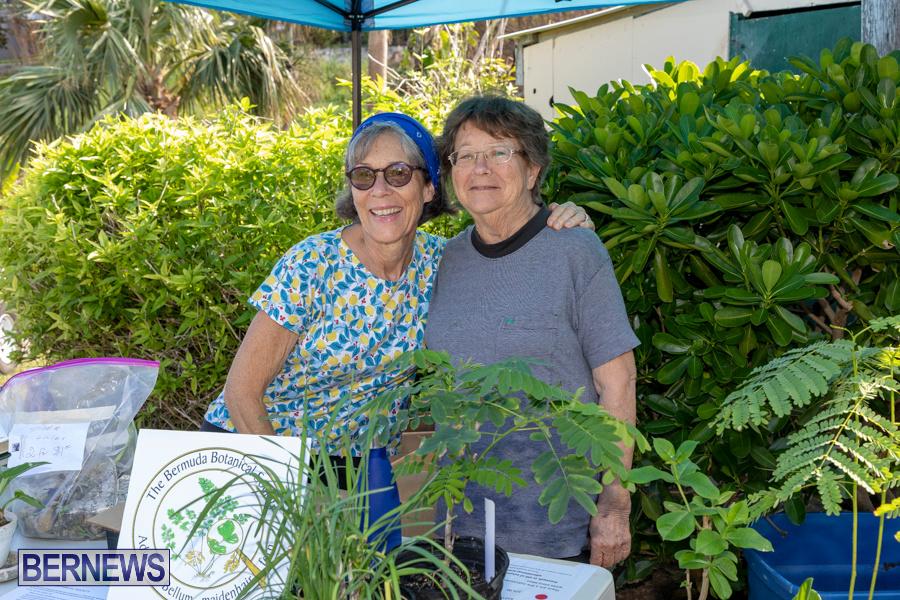 Bermuda Botanical Society Plant Sale, October 12 2019-4648