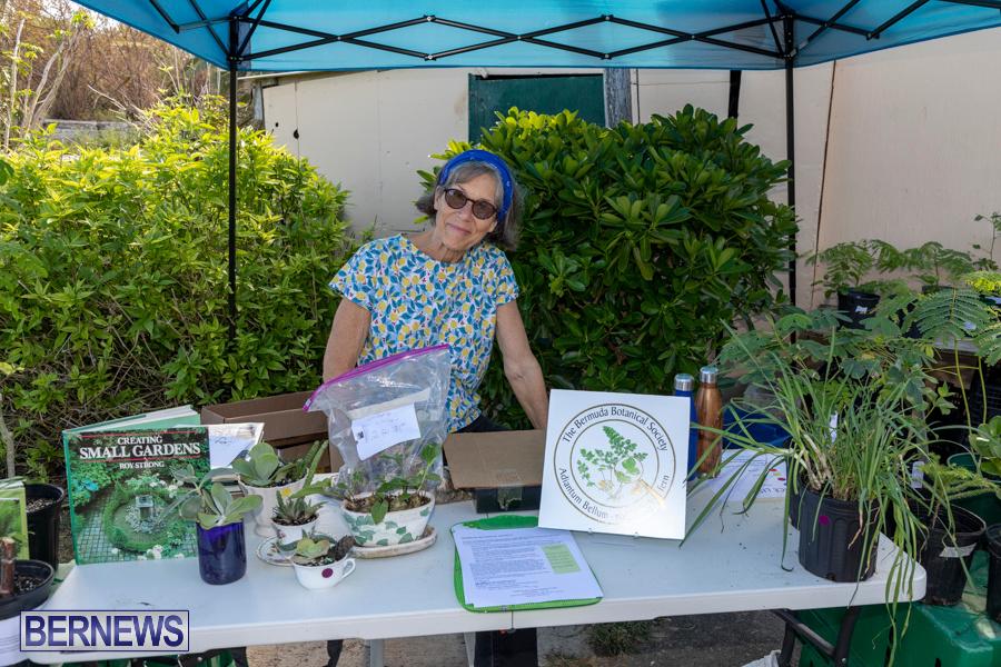 Bermuda Botanical Society Plant Sale, October 12 2019-4654