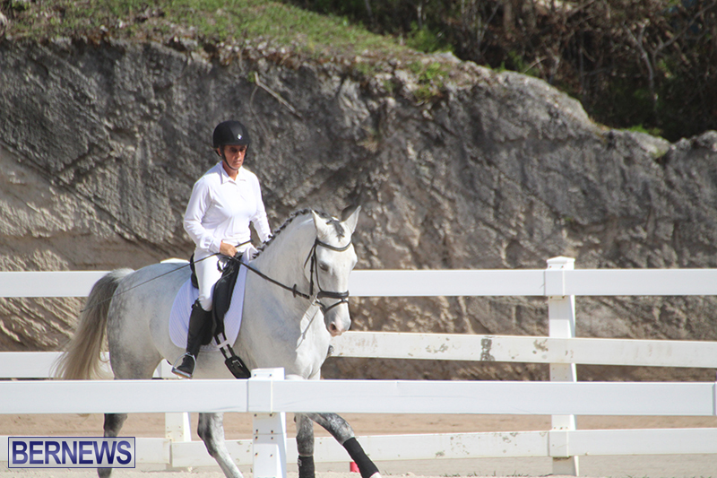 Bermuda-Dressage-Show-Oct-13-2019-11
