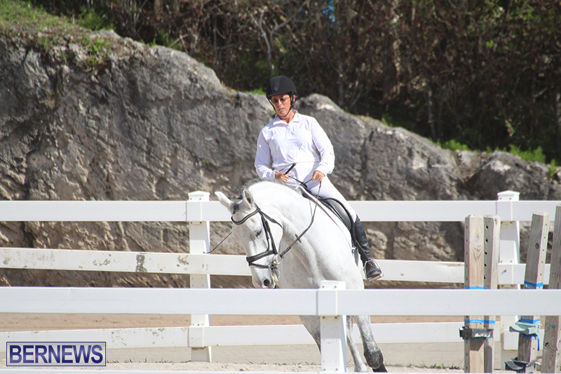 Bermuda-Dressage-Show-Oct-13-2019-12