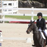 Bermuda Dressage Show Oct 13 2019 (15)