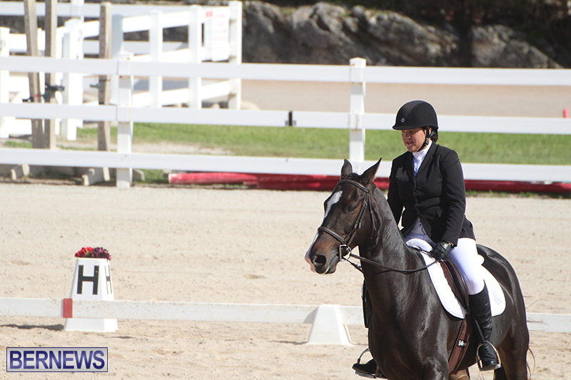 Bermuda-Dressage-Show-Oct-13-2019-15