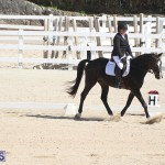 Bermuda Dressage Show Oct 13 2019 (16)