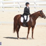 Bermuda Dressage Show Oct 13 2019 (17)