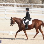 Bermuda Dressage Show Oct 13 2019 (19)