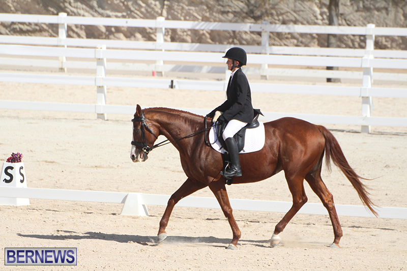 Bermuda-Dressage-Show-Oct-13-2019-19