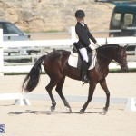 Bermuda Dressage Show Oct 13 2019 (3)