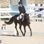 Bermuda Dressage Show Oct 13 2019 (4)